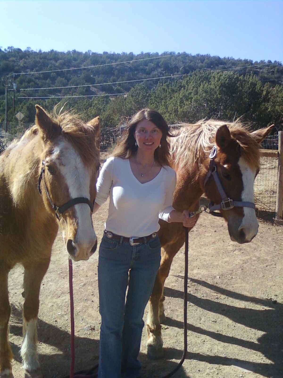 An Interview With Clinical Counselor Charlene Pyskoty :   Charlene Pyskoty,